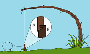 spring-snare